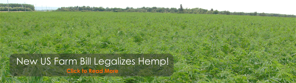 New US Farm Bill Legalizes Industrial Hemp!